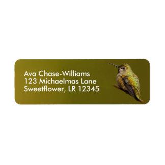 Etiqueta O colibri de Anna bonita no Trumpetvine