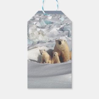 Etiqueta Para Presente Adicione o SLOGAN para salvar o gelo ártico do