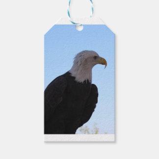 Etiqueta Para Presente Águia americana