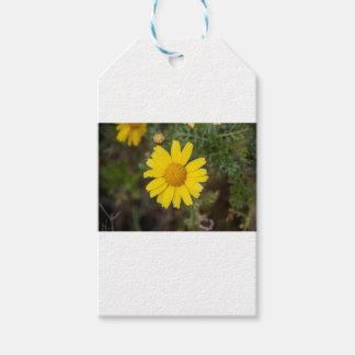 Etiqueta Para Presente Amarelo do cu da flor da margarida