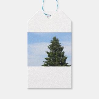 Etiqueta Para Presente Árvore de abeto verde contra um céu claro