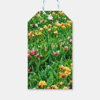 Etiqueta Para Presente Campo com as tulipas cor-de-rosa e amarelas