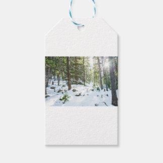 Etiqueta Para Presente Campo de jogos nevado da região selvagem da