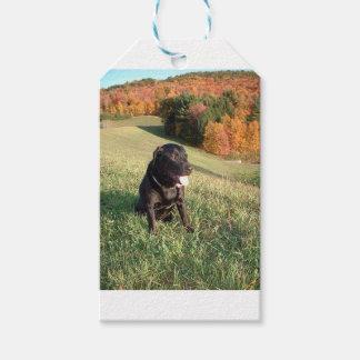Etiqueta Para Presente Cão do Chert
