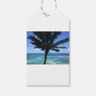 Etiqueta Para Presente Coleção havaiana do papel de embrulho da palma