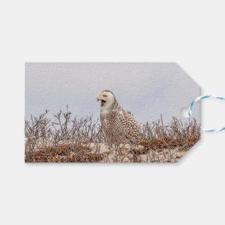 Etiqueta Para Presente Coruja nevado que senta-se na praia