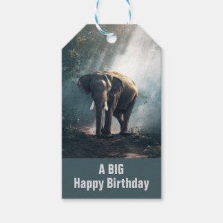 Etiqueta Para Presente Elefante asiático em um aniversário Sunlit da