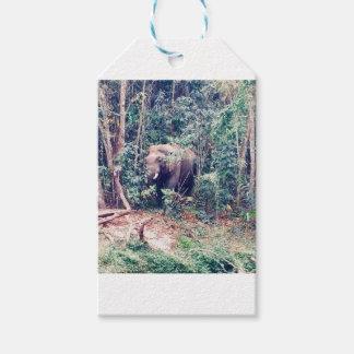 Etiqueta Para Presente Elefante em Tailândia