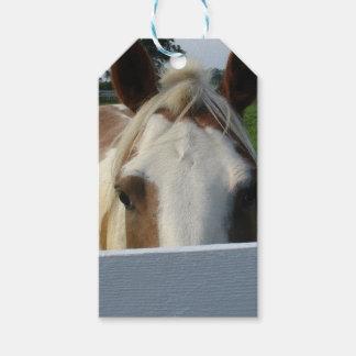 Etiqueta Para Presente Espreite um cavalo do Palomino da vaia atrás da