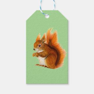 Etiqueta Para Presente Esquilo vermelho pintado na arte dos animais