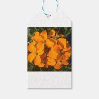 Etiqueta Para Presente Explosão da laranja