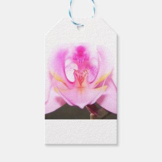 Etiqueta Para Presente extremo próximo acima do interior de uma flor da