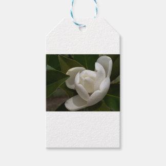 Etiqueta Para Presente flor em botão branca de magnólia do sul