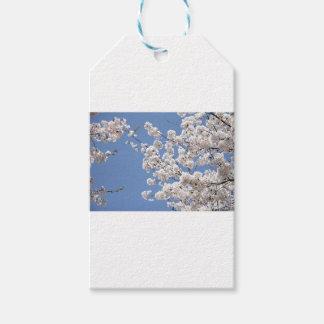 Etiqueta Para Presente Flores brancas da cereja
