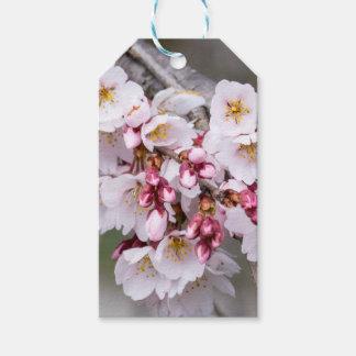 Etiqueta Para Presente Flores de cerejeira