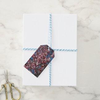 Etiqueta Para Presente Flores de cerejeira e primavera do céu azul floral