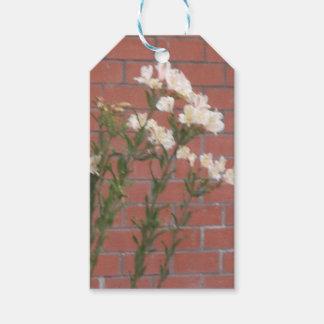 Etiqueta Para Presente Flores no tijolo