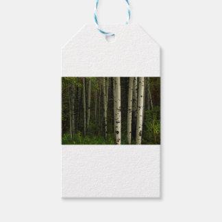 Etiqueta Para Presente Floresta branca