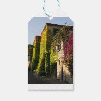 Etiqueta Para Presente Folhas coloridas em paredes da casa
