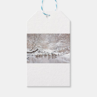 Etiqueta Para Presente Gansos na neve