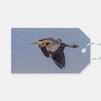 Etiqueta Para Presente Garça-real de grande azul em vôo