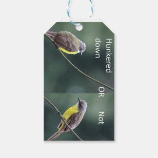 Etiqueta Para Presente hunkered para baixo ou não o pássaro