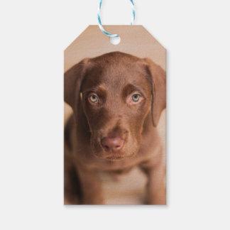 Etiqueta Para Presente Labrador