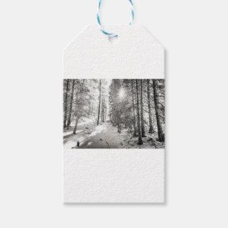 Etiqueta Para Presente Máscaras da floresta da luz do sol do inverno das