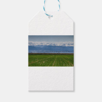 Etiqueta Para Presente Montanha rochosa que cultiva a vista