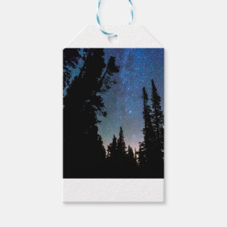 Etiqueta Para Presente Noite da floresta da montanha rochosa