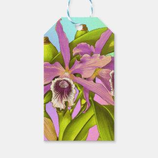 Etiqueta Para Presente Orquídeas cor-de-rosa coloridas