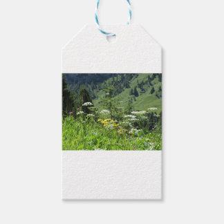 Etiqueta Para Presente Paisagem alpina com wildflowers e abetos