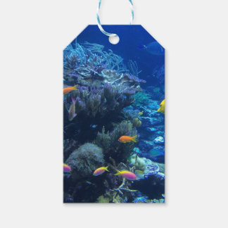 Etiqueta Para Presente Peixes subaquáticos tropicais