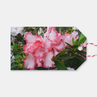 Etiqueta Para Presente Primavera vermelho e branco dobro das azáleas