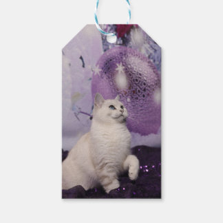 Etiqueta Para Presente Purple XMAS Cat