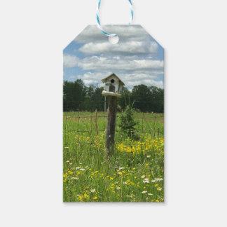 Etiqueta Para Presente Quedas de cristal do Tag do presente do Birdhouse