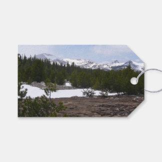 Etiqueta Para Presente Serra montanhas e neve de Nevada em Yosemite