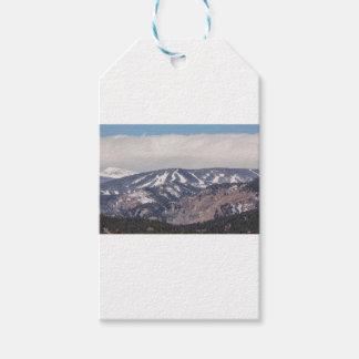 Etiqueta Para Presente Sonho da inclinação do esqui