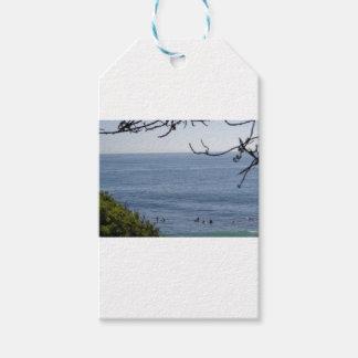 Etiqueta Para Presente surf da praia de laguna