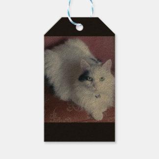 Etiqueta Para Presente Tag bonitos do presente do gato macio branco