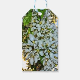 Etiqueta Para Presente Tag do presente da flor