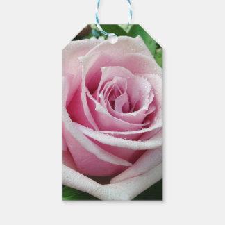 Etiqueta Para Presente Tag do presente do rosa do rosa