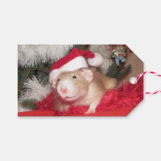Etiqueta Para Presente Tag do presente do vidoeiro do rato do animal de