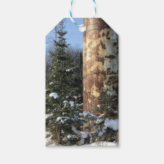 Etiqueta Para Presente Tag industriais exteriores do presente da paisagem