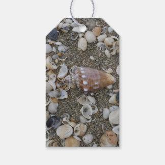 Etiqueta Para Presente Tesouro do Seashell do Conch