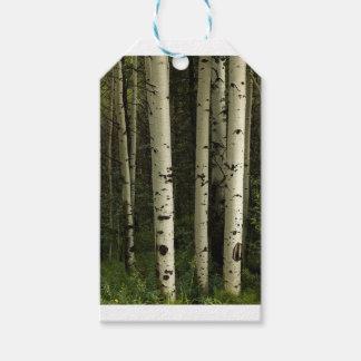 Etiqueta Para Presente Textura de um retrato da floresta