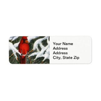 Etiqueta Pássaro vermelho cardinal das árvores cobertos de