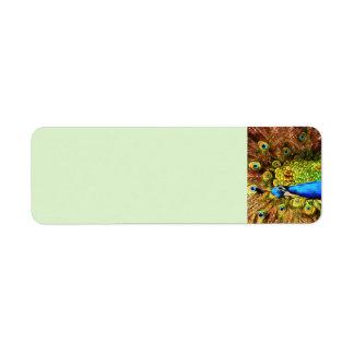 Etiqueta Pavão colorido