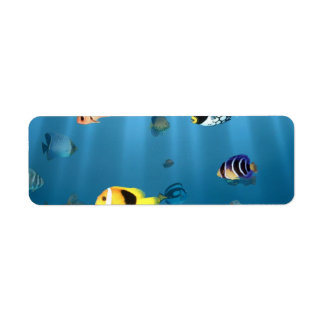 Etiqueta Peixes no oceano