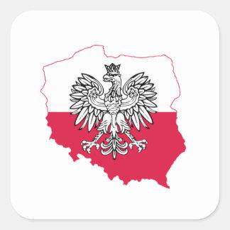 Etiqueta polonesa da bandeira do mapa